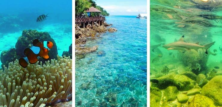 tempat snorkeling menarik pulau langkawi