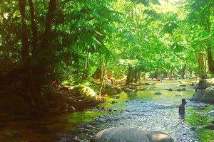 Tempat Menarik di Gombak, Selangor - Panduan Bercuti