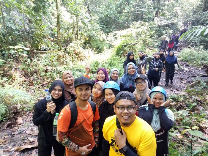 the tree top walk sungai sedim
