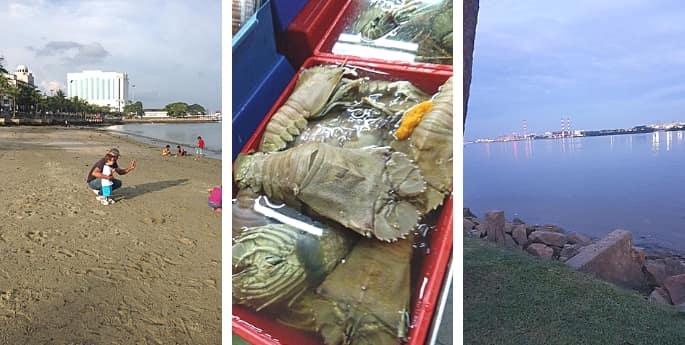 pantai menarik di johor bahru