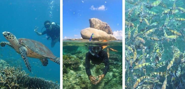 pulau tioman attraction pahang