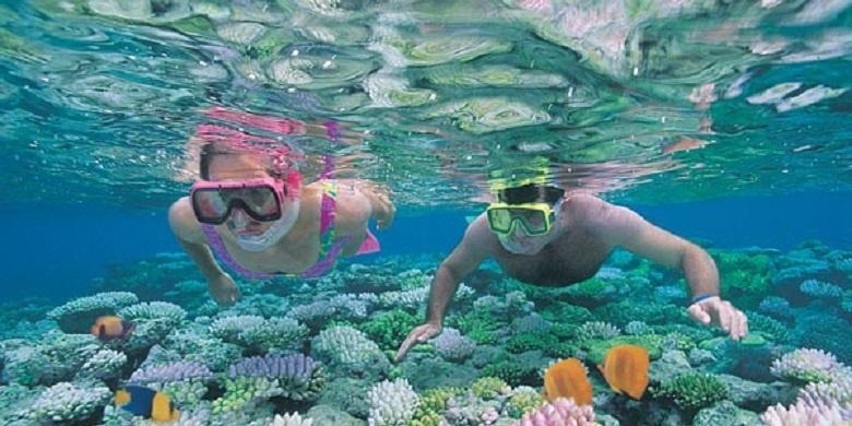 Snorkeling Di Redang