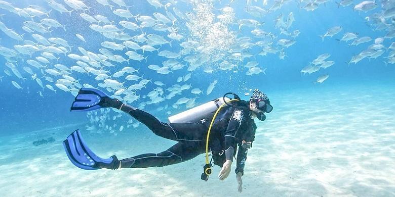 redang diving