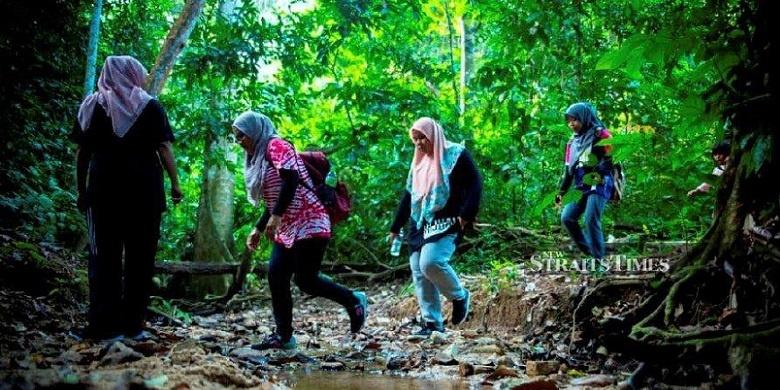 redang jungle trekking