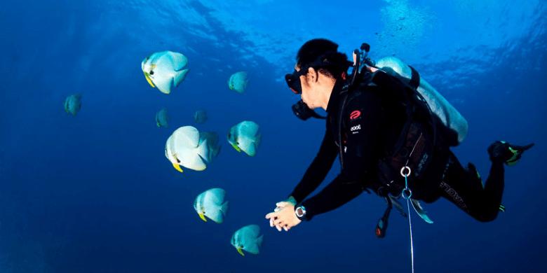 Pulau Lang Tengah - Scuba Diving (Menyelam)