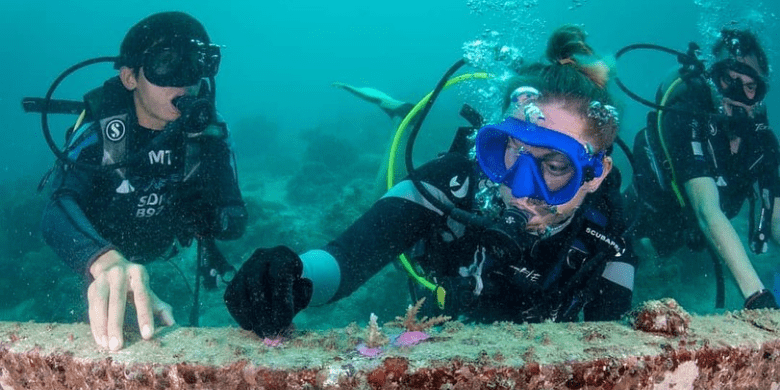 Mengambil Kursus PADI di Pulau Mabul