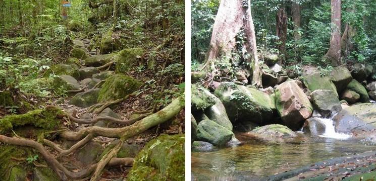 Santubong National Park