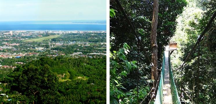 Canopy Walk Bukit Gemok