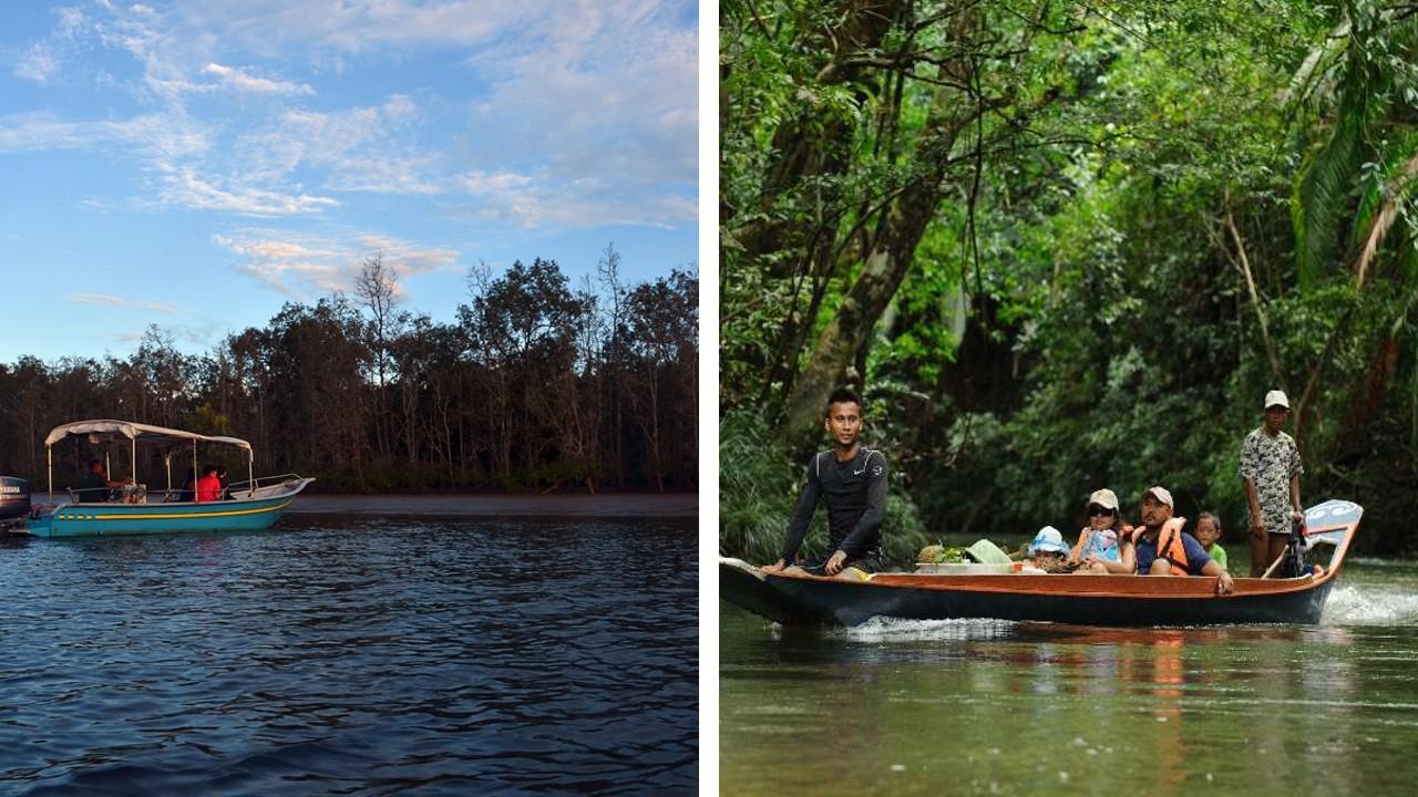 kuching wetland national park