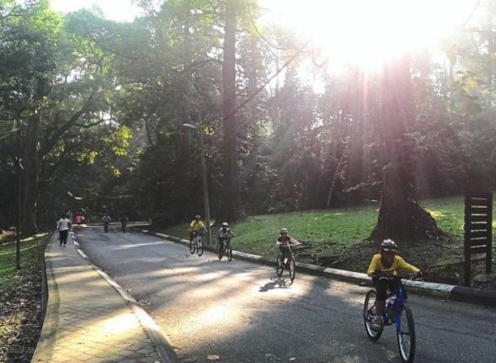 10 Tempat Basikal Terbaik di Malaysia
