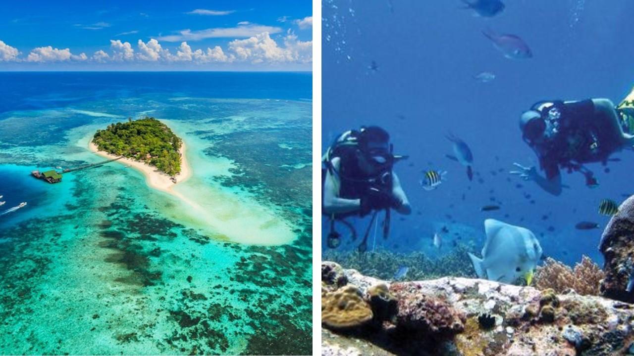 Pulau Lankayan diving